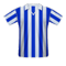 Sheffield Wednesday football jersey