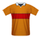 Motherwell football jersey