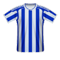 Brighton and Hove Albion football jersey