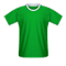 AS Saint-Etienne football jersey